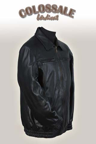 Roland  2 Leather jackets for Men preview image