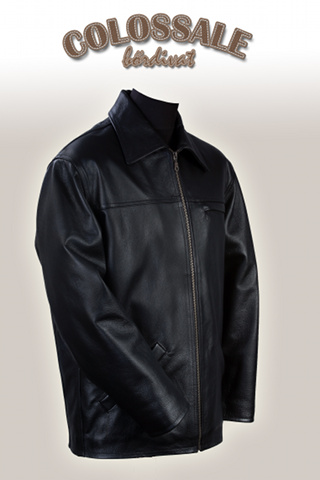 Luis  2 Leather jackets for Men preview image